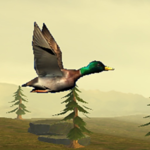 Wild Duck Hunter