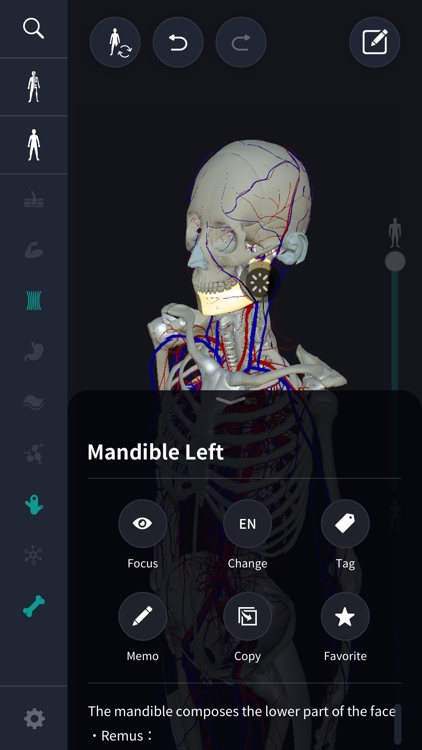 3D anatomy teamLabBody2020 screenshot-5