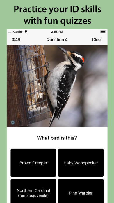Smart Bird ID Screenshot