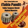 Vidya Multimedia - iTabla Pandit Professional アートワーク