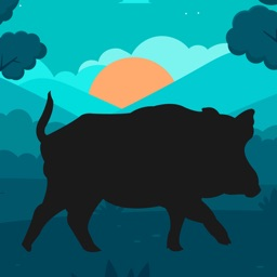 Wild Hog Hunting Calls