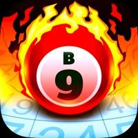 Arena Bingo Hack Online Generator  img