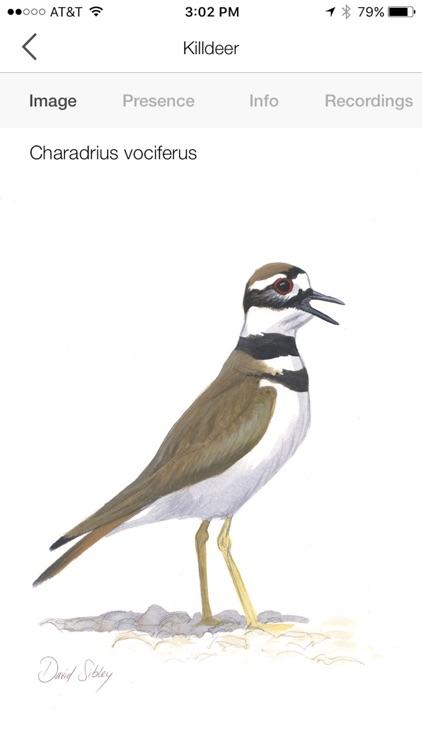 Song Sleuth: Auto Bird Song ID screenshot-5