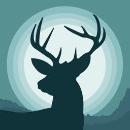 Whitetail Deer Hunting Calls +