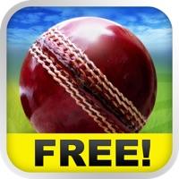 Hack Cricket WorldCup Fever
