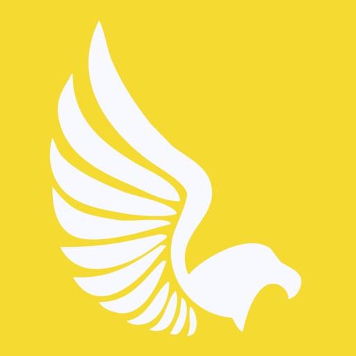 Falcon Expense Reports & Miles