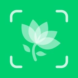 Plant Identification - PlantID