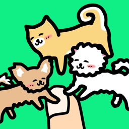 Play with Dogs - relaxing game