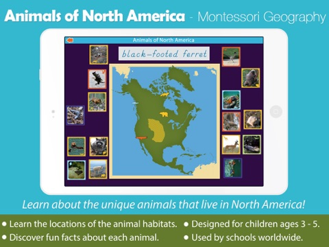 Animals of North America - náhled