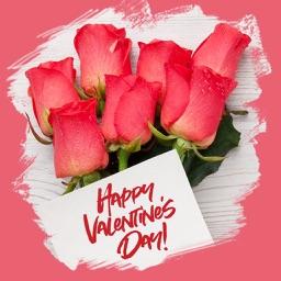 Valentine's Day Vibes