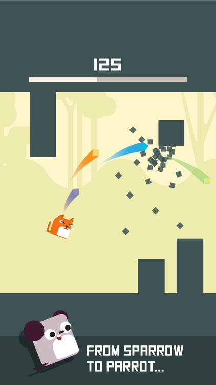 Square Bird Watch - Block Jump
