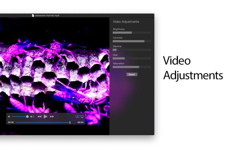 MKPlayer Screenshot
