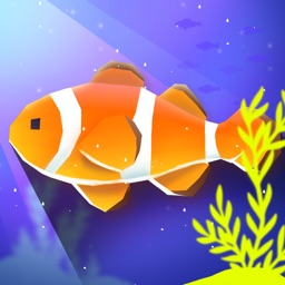 """Pocket Aquarium """"Pockerium"""""""