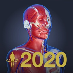 3D anatomy teamLabBody2020