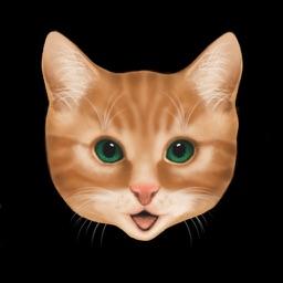 Kitten Jump Lite