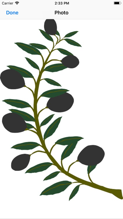 Olive Branch Stickers screenshot-1