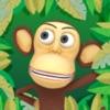 Crowd Monkey Run
