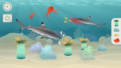 タイニーポップによるサンゴ礁のおすすめ画像1