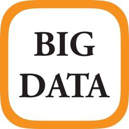 Big Data 2020