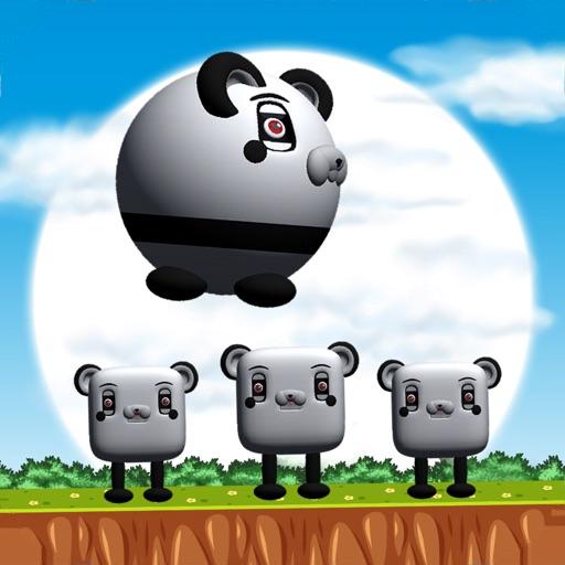 Funny Panda Jumping