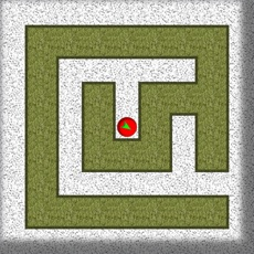 Activities of Exit Blind Maze Labyrinth