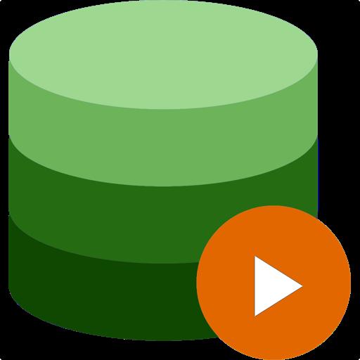 Videlion - Video Organizer