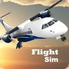 Flight Sim 2021 - iPadアプリ