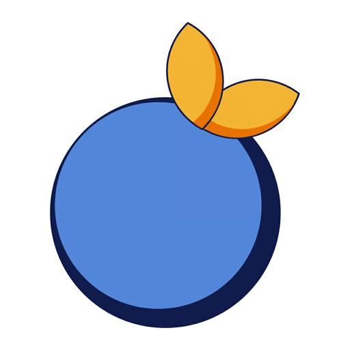 Blue Orange Companion