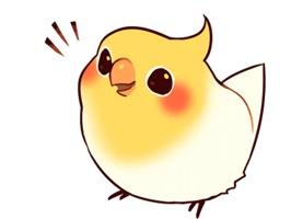 Beautiful Coca Bird