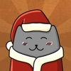 Cat Stories: New Year