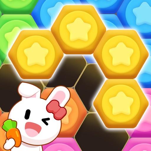 Hexa Puzzle - classic