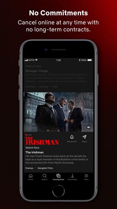 Netflix screenshot four