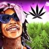 Wiz Khalifa's Weed Farm - iPadアプリ