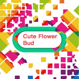 Cute Flower Bud
