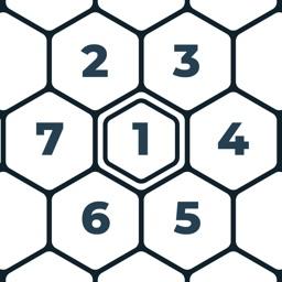 Number Mazes: Rikudo Puzzles