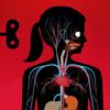 Tinybop Inc. - The Human Body by Tinybop artwork