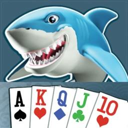 Vegas Card Sharks