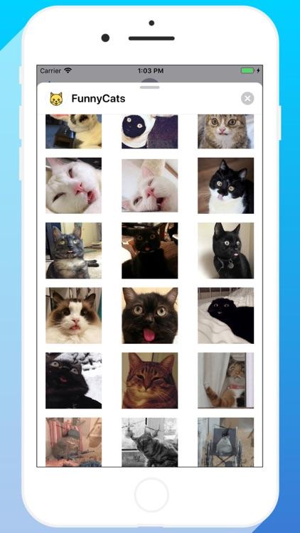 Talkitty - Cats Stickers screenshot-6