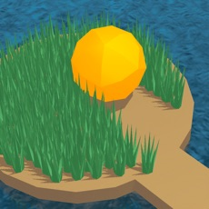 Activities of Grass Ball