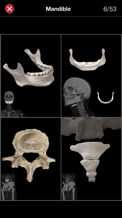 Anatomy Quiz Pro screenshot-3