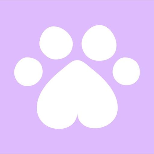 Feli - Cute Cats & Kitties