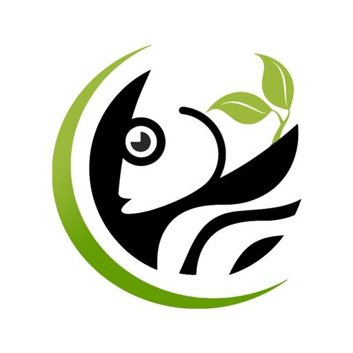 متجر تربية أسماك الزينة