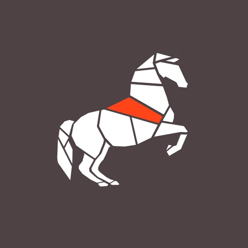 Levade - Equestrian Training