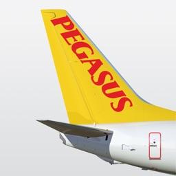 Book Flight Tickets by Pegasus