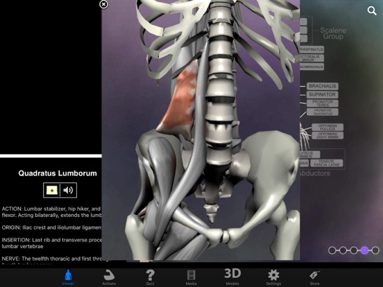 Muscle & Bone Anatomy 3Dのおすすめ画像2