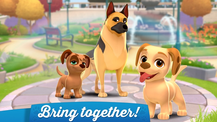 Dogs Home: Design and Puzzles