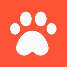 DogsHouse