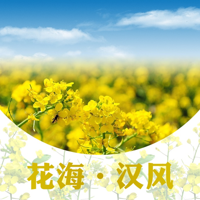 汉台旅游网app icon图