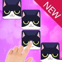 Magic Cat Piano Tiles free Jewels hack