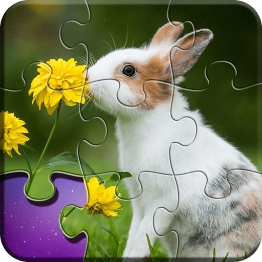 Jigsaw Wonderland